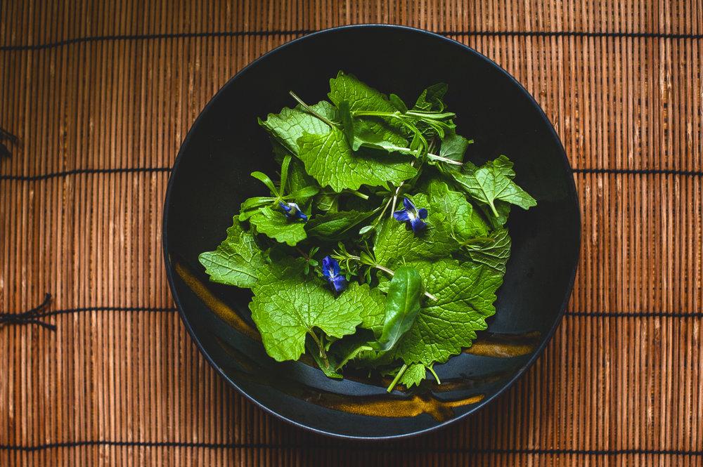TerraSura-Herbs-Web-3482.jpg