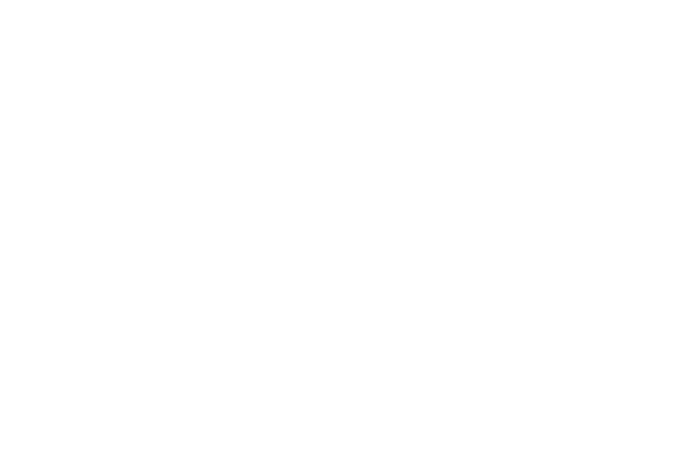 OFFICIALSELECTION-UtahDanceFilmFestival-2019.png