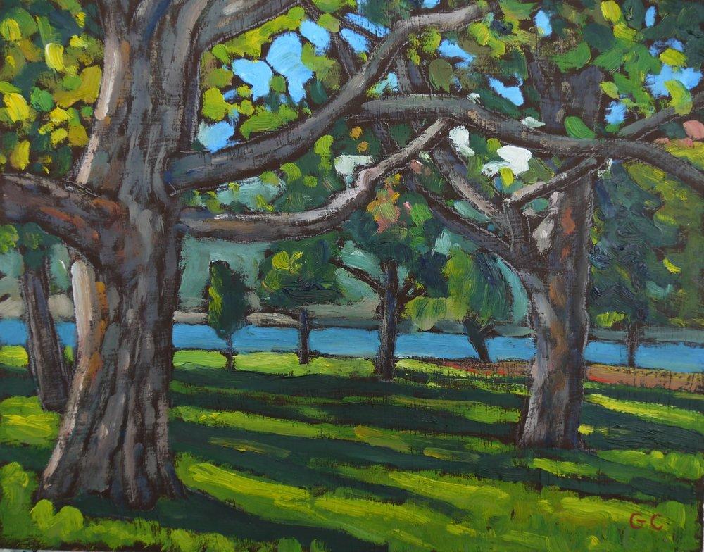 Strathcona Park, Kelowna