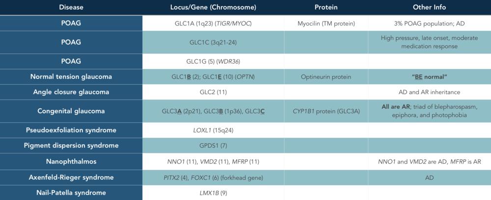 Glaucoma genetics.png