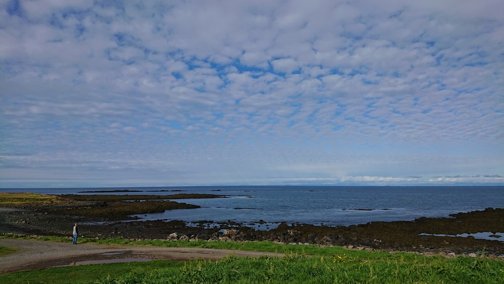 View from our van at Akranes Campsite, Iceland. Photo by Thomas Kear.