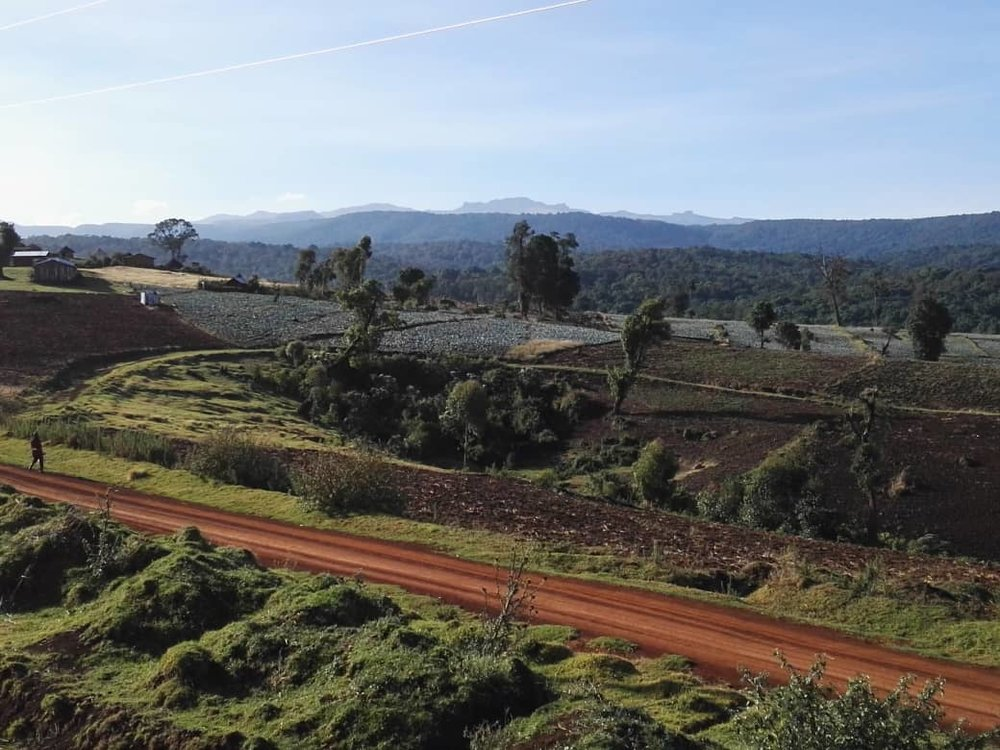 Mount Elgon view