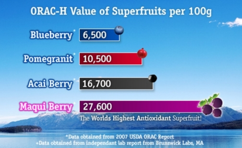 ORAC (Oxygen Radical Absorbance Capacity) is a measure of antioxidant potency.