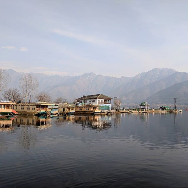 Dal lake. Where it all started.  Check out our newly redone website cashmerefromkashmir.com