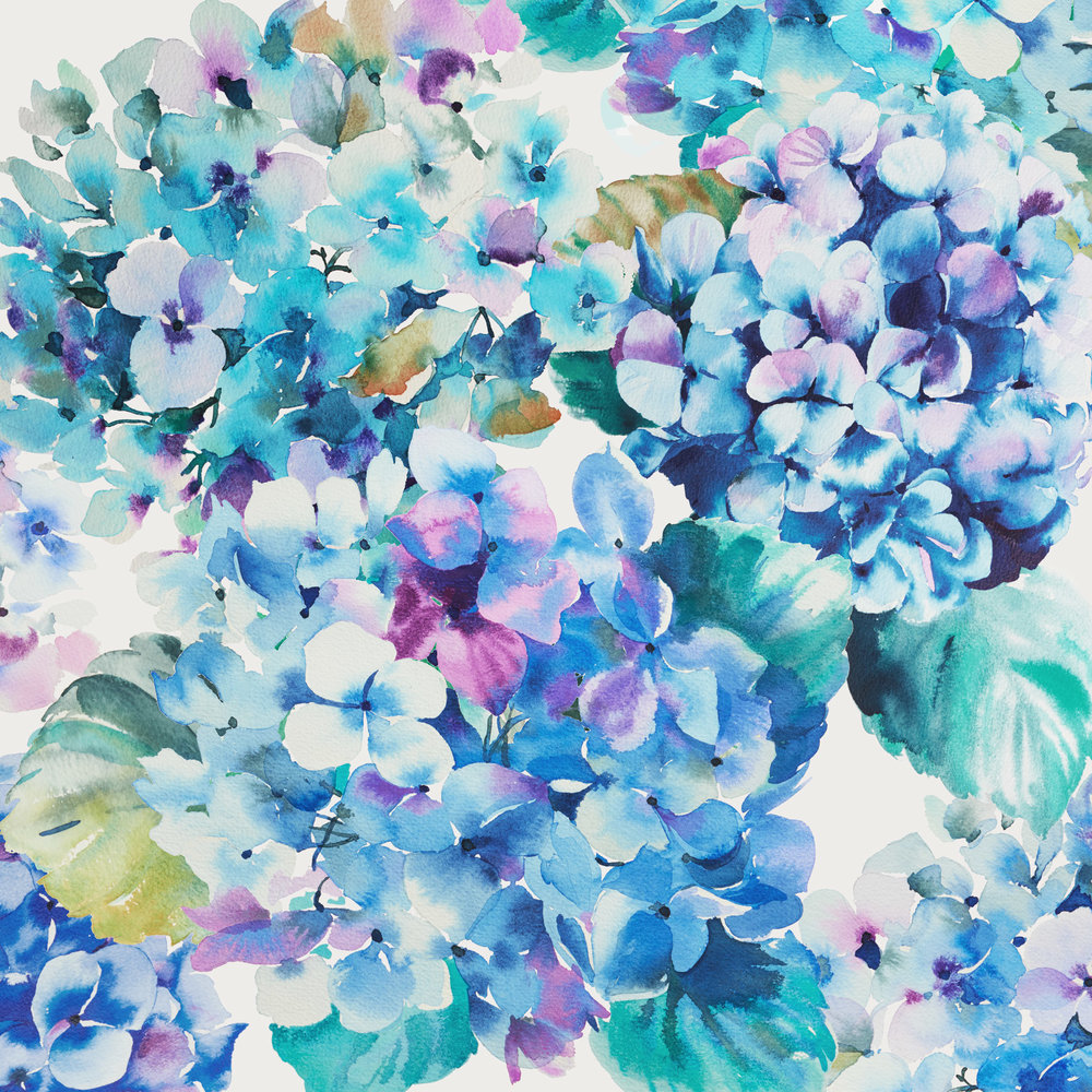 HELLEN HALLAM - TEXINTEL - BlueHydrangea_15cm.jpg