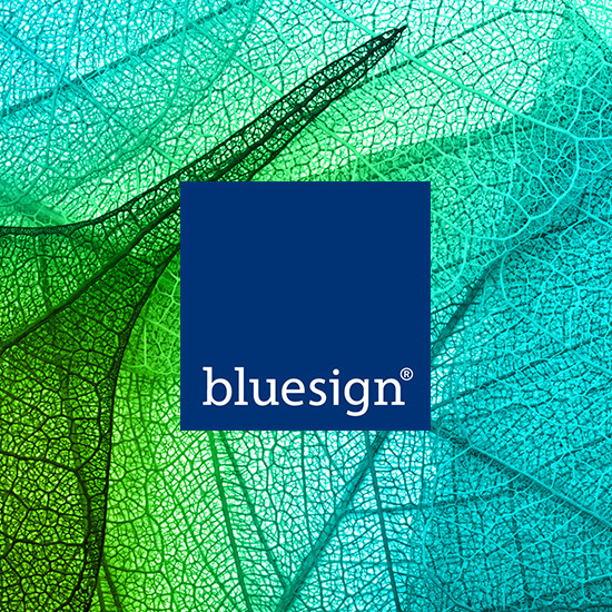 BLUESIGN-TEXINTEL.jpg