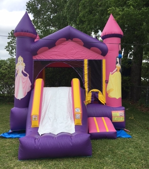Bounce and Slide #2   -    $150+ tax  13'W x 20'L x 15'H