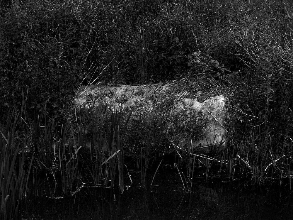 5 - Riverbed Stories.jpg