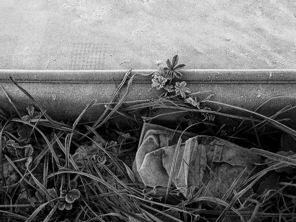 9 - Riverbed Stories.jpg