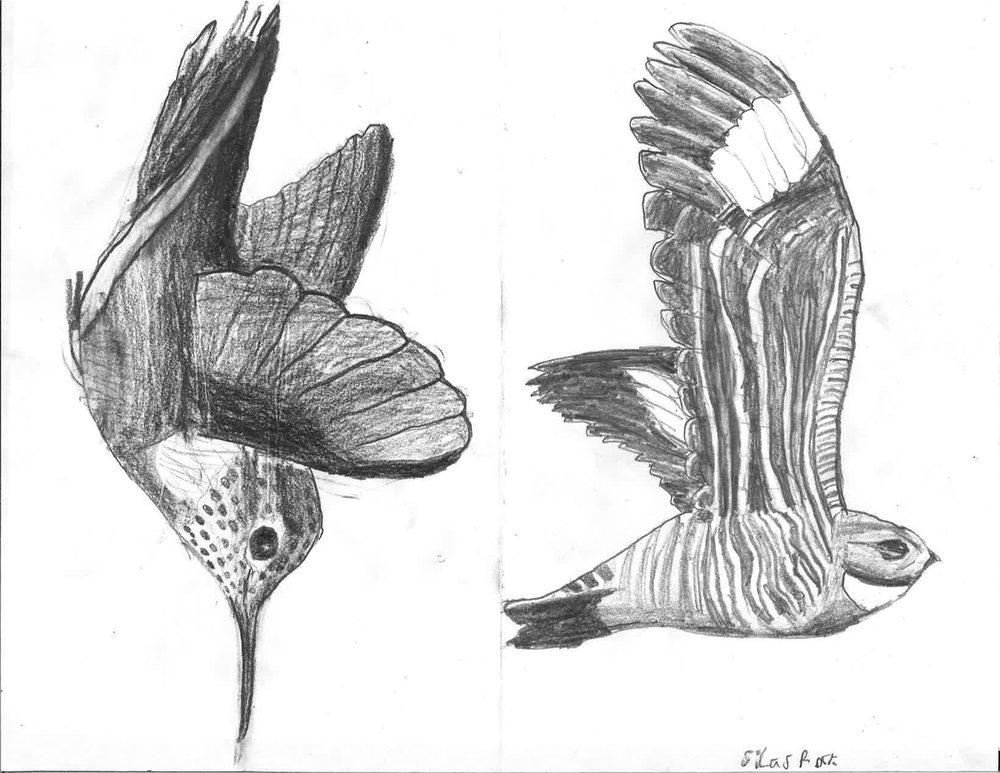 Sketchbook_Page_13.jpg