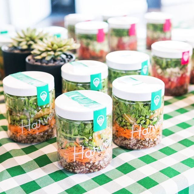 Here to cater your next fitness event! 🧘‍♀️+ 🥗 Great times last week with @y7studio & @naadam.co 📸 @enkibinki #SaladsAndYoga #EatGoodFeelGood #FitFam