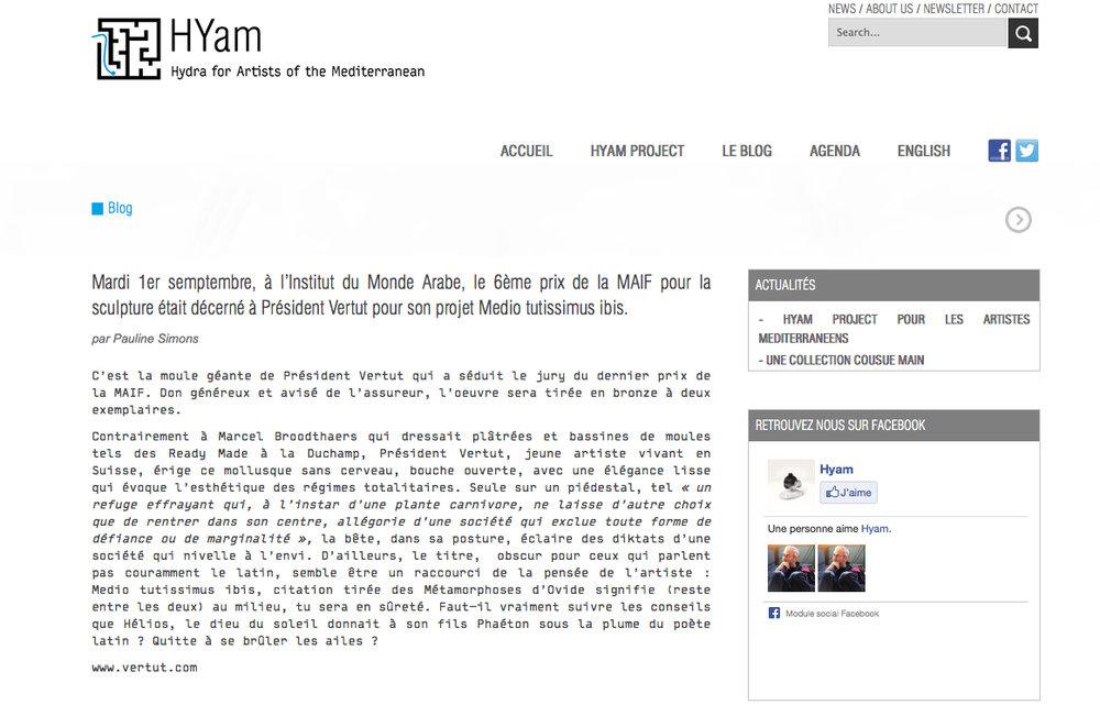 PMPS - Blog Pauline Simons HYam Project.jpg