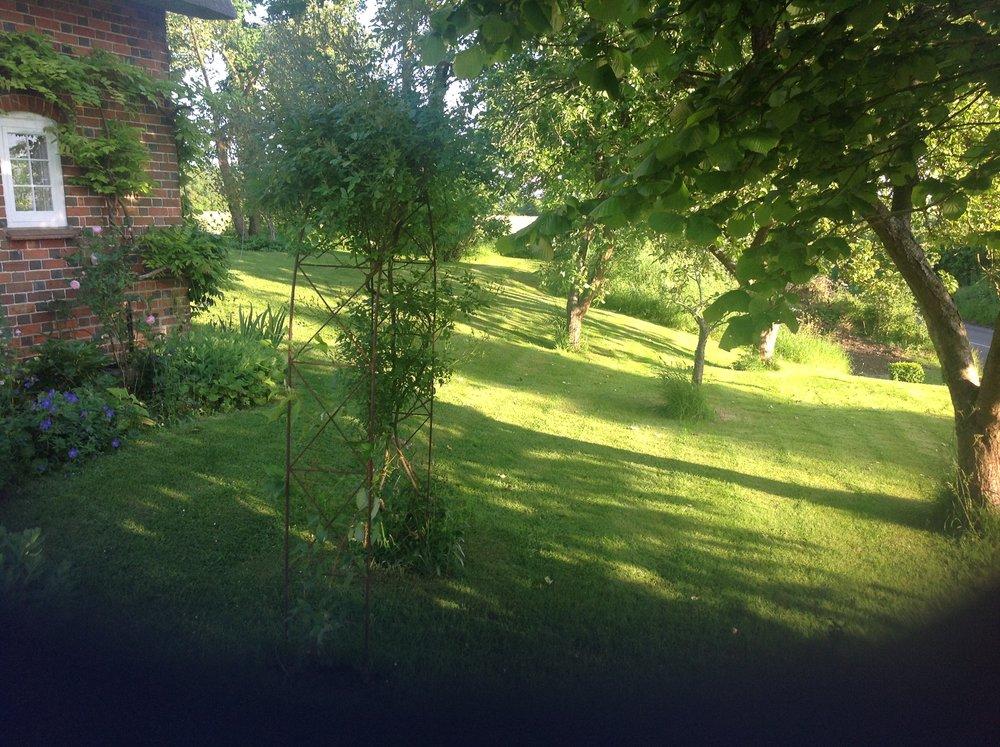 english-cottage-garden.jpeg