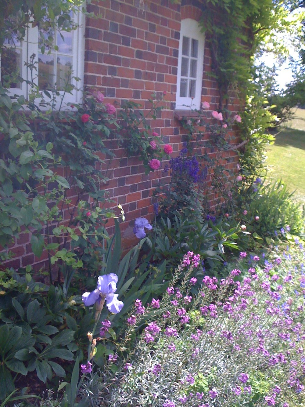 cottage-garden.jpeg