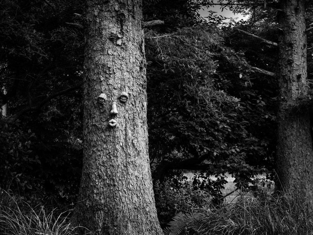 Tree spirit, Cannon Beach, OR