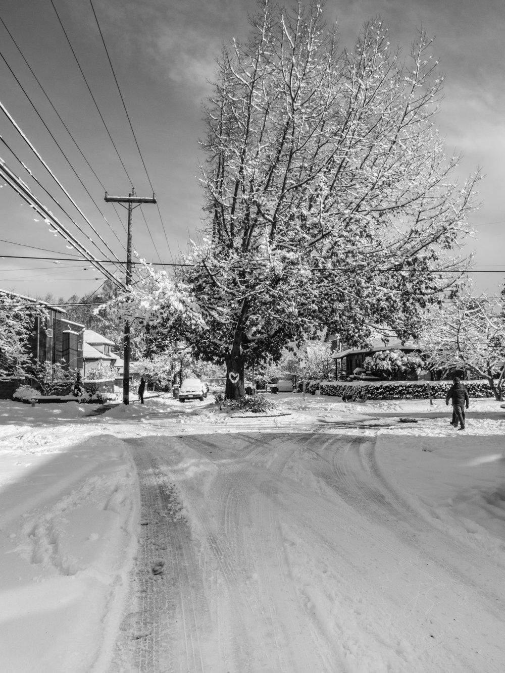 snowblog19.jpg