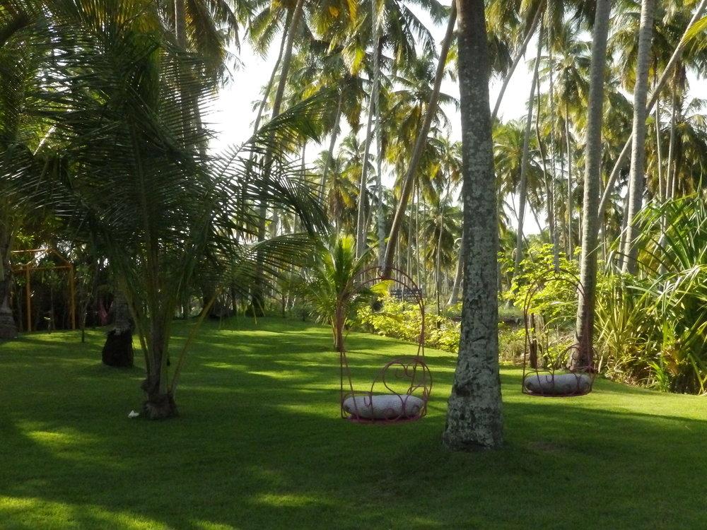 Los jardines de la posada  Patacho .
