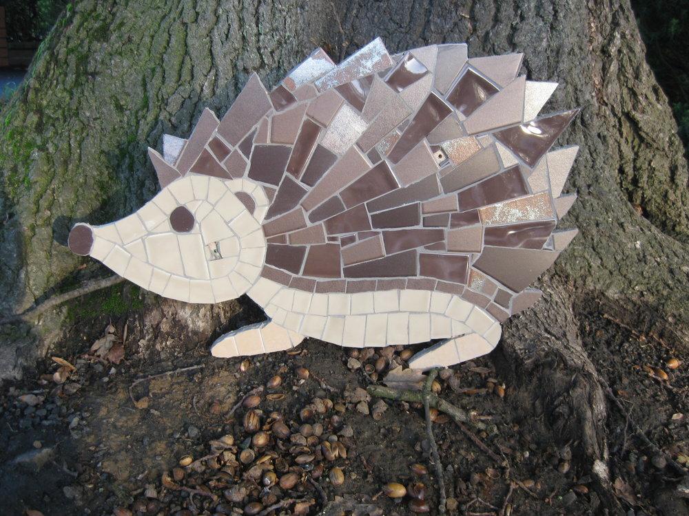 highfield hedgehog .jpg
