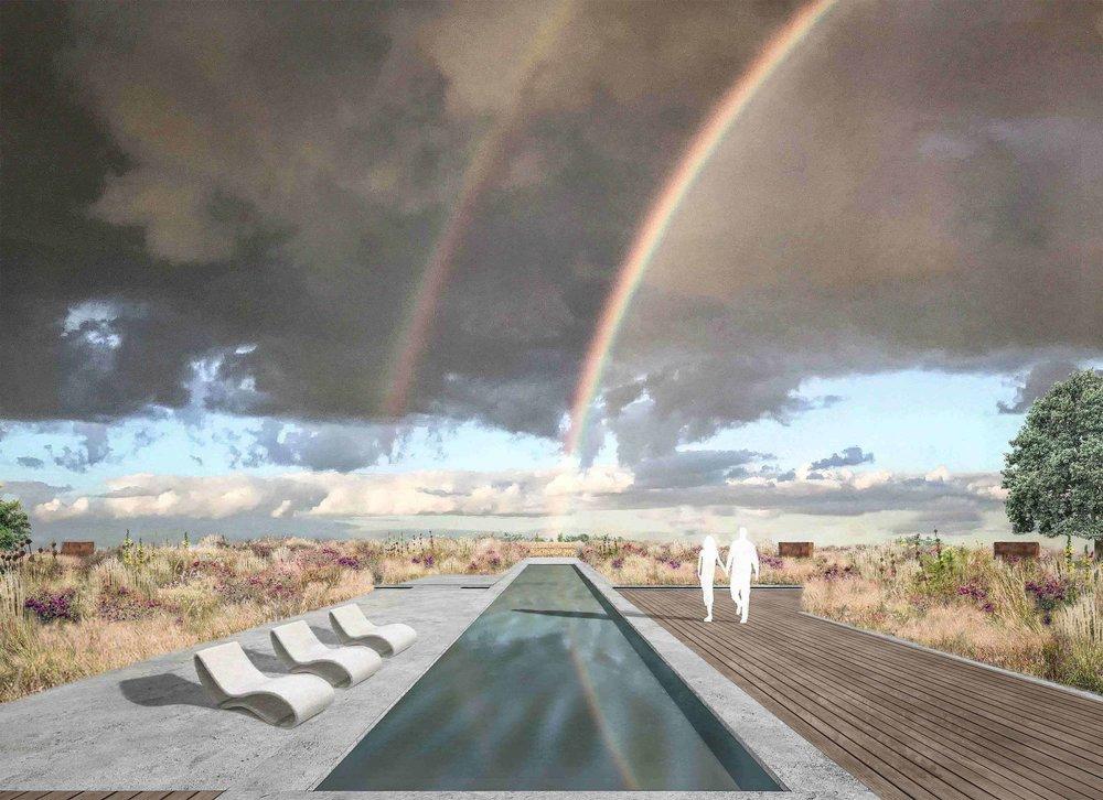 swimming pool concrete terrace oak deck modern garden design prairie planting.jpg