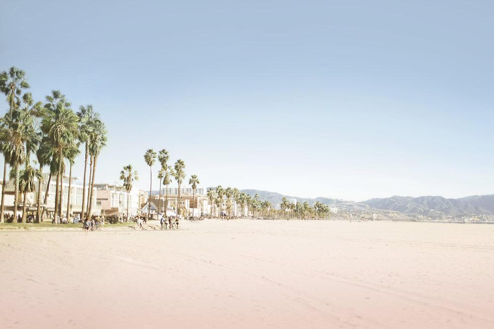 15 CALI (VENICE BEACH).jpg