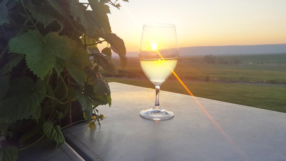 wine-photo2018.jpg