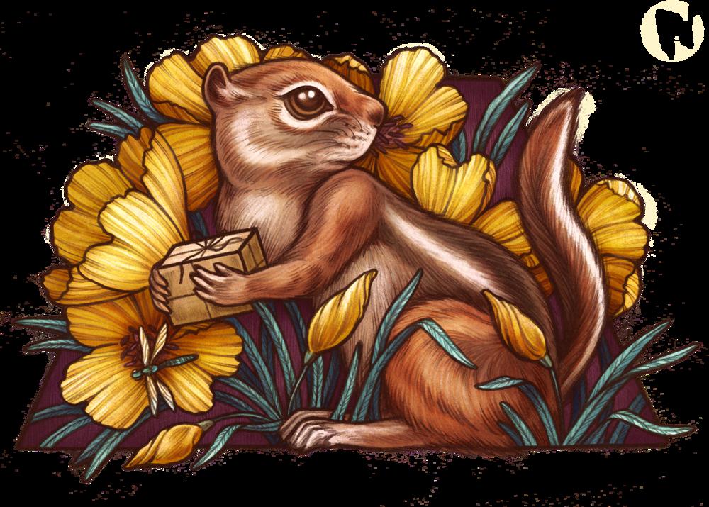 KateOHaraBestOfRenoSquirrel.png
