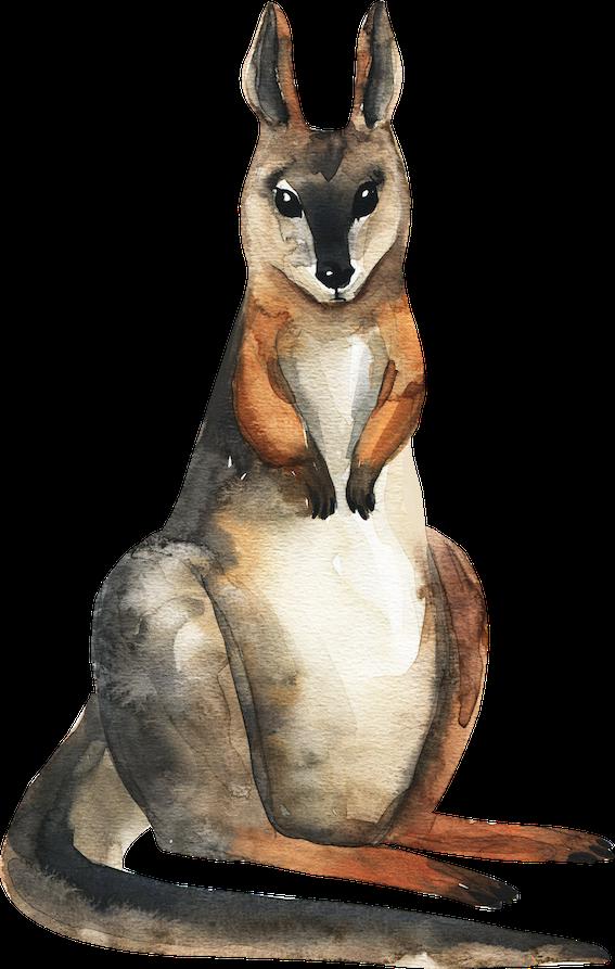 Kangaroo Small.png
