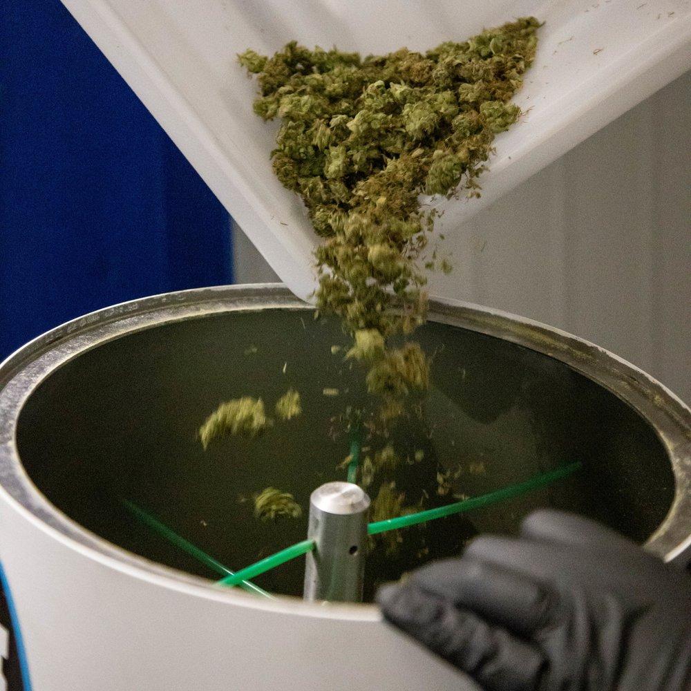 2019_01_27_Packaging_Drying_Cultivation_Flowering_Harmony_Dispensary_Cannabis_Marijuana_19.jpg