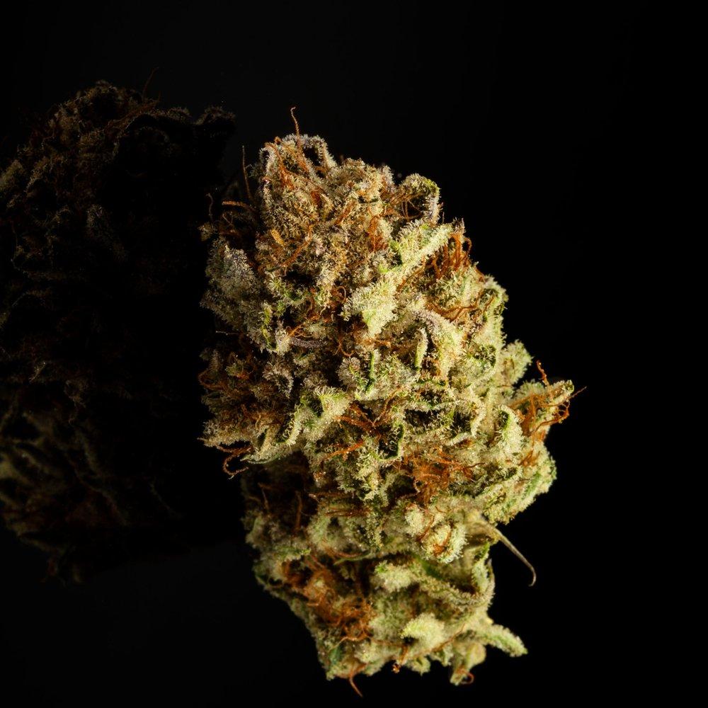 _IG_2018_10_21_COOKIES_Cultivation_Harmony_Dispensary_Cannabis_Marijuana_06.jpg