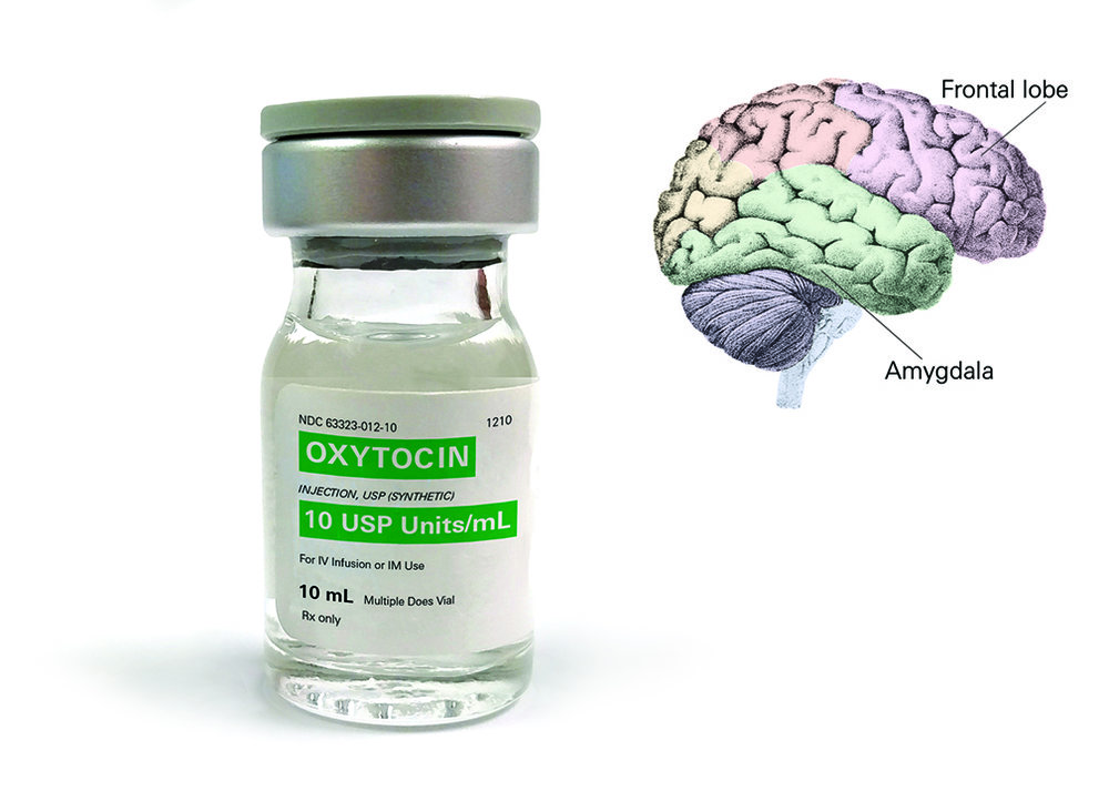Mext_Consulting_Firm_Melbourne_Trust_HuTrust_Neuroscience_Oxytocin_Amygdala.jpg