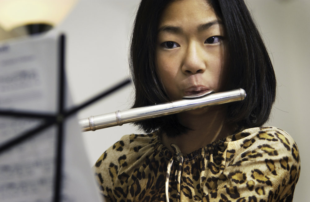 Flute - An instrument of precision, grace and subtlety, the flute lends itself equally well to both classical and jazz stylings. Classes focus on the instrument's integration into a band, however plenty of opportunities exist for the dedicated soloist, or those interested in forming their own brass trios, or quartets.