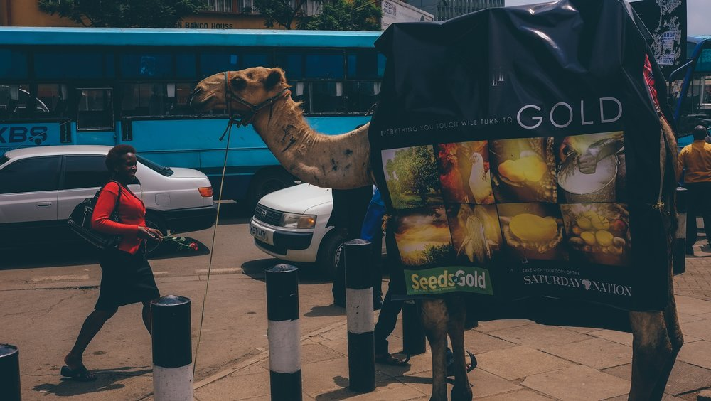 Camel Ad in Nairobi (Kenya).jpg