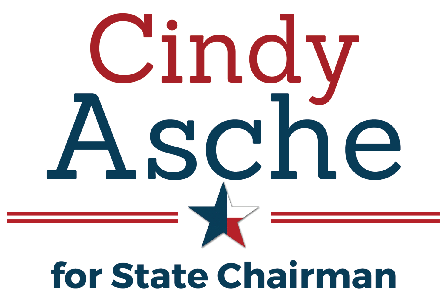 Cindy Asche for State Chairman