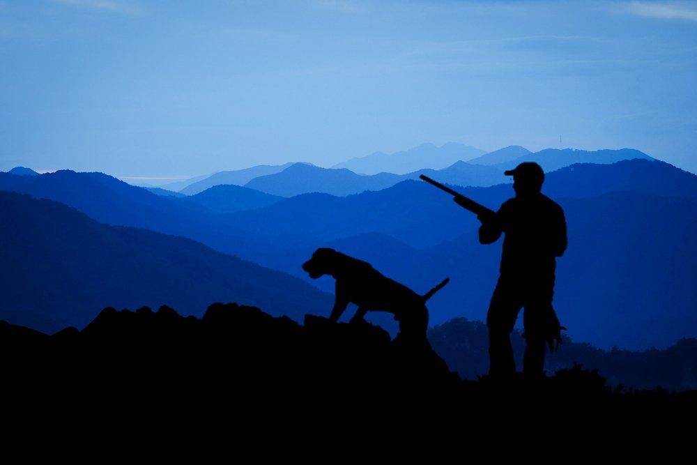hunting-3145387_1920.jpg
