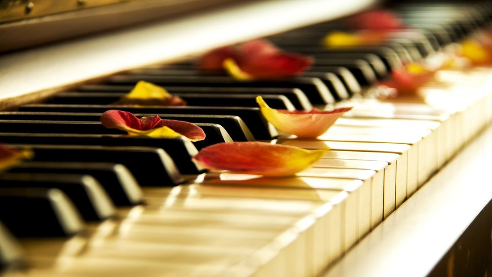 Image result for Pianoforall Online Piano Course