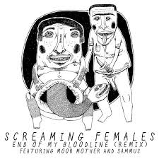 screaming females _ sammus.jpg