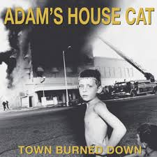 adams house cat.jpg