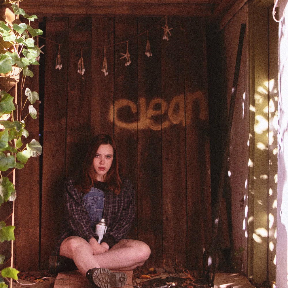 """soccer mommy - Clean March 2ndIt was a breakout year for Sophie Allison. The Nashville-based singer/songwriter scored big with this collection of affecting tunes. It's one of those """"listen front to back, no skip"""" records. From """"Cool"""",to hit """"Your Dog"""", all the way to closer """"Wildflowers"""", Clean was a revelation of strength.-KPL"""