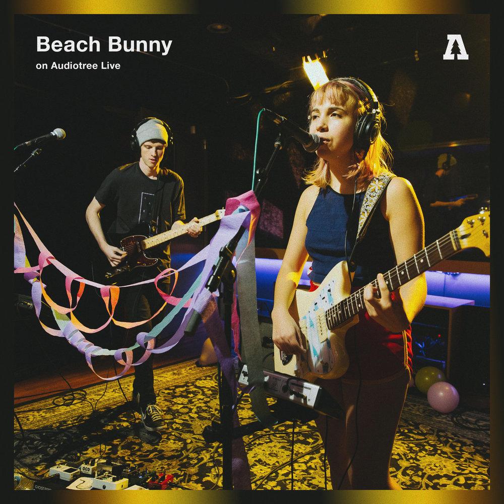 beach bunny.jpg