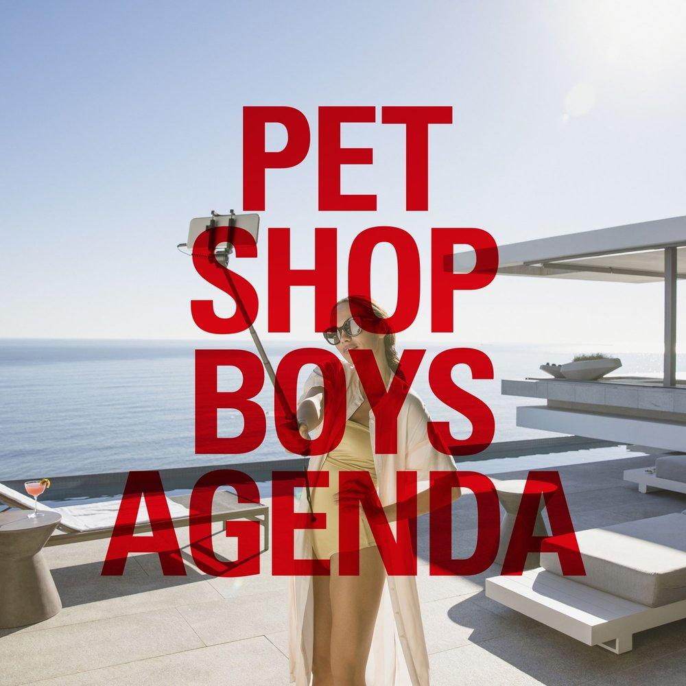 pet shop boys.jpg