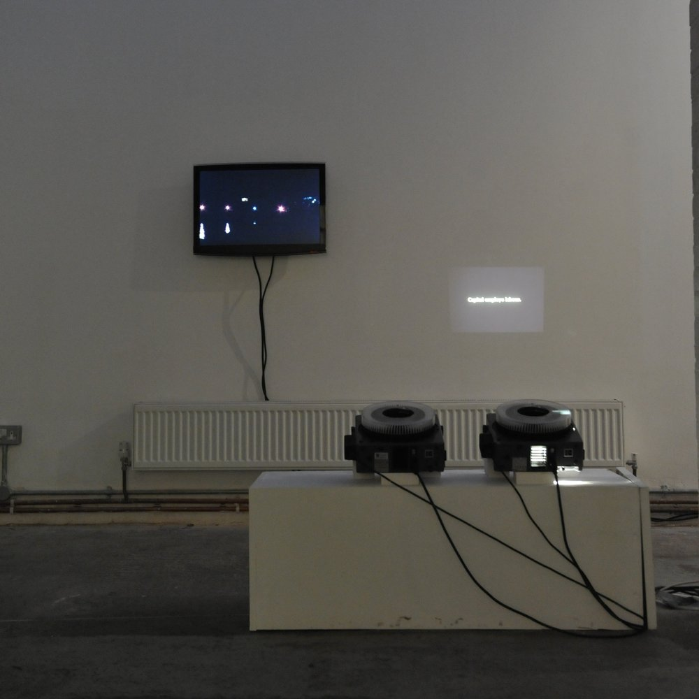 Installation view of   Shifting Gazes