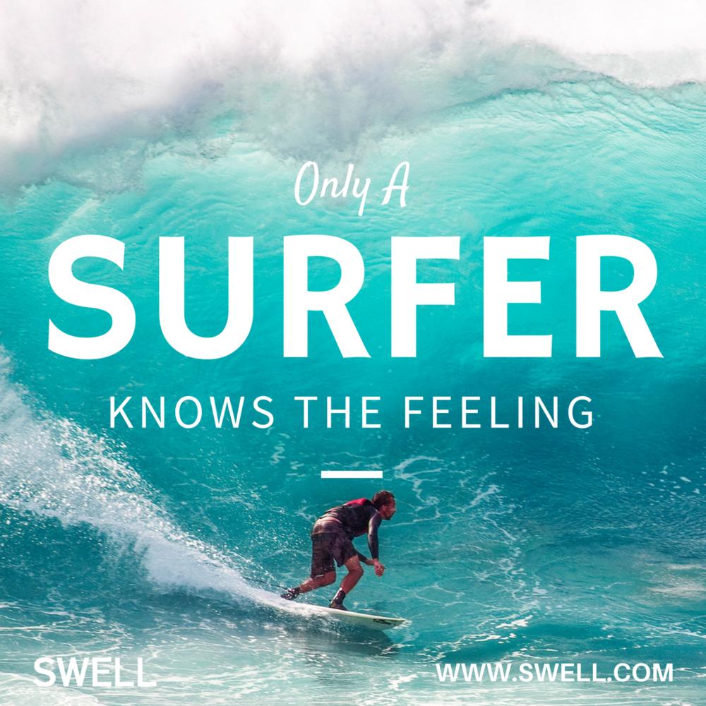 Surfer (3).png