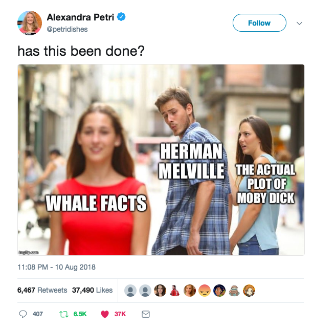 (LHC)WhaleFacts.png