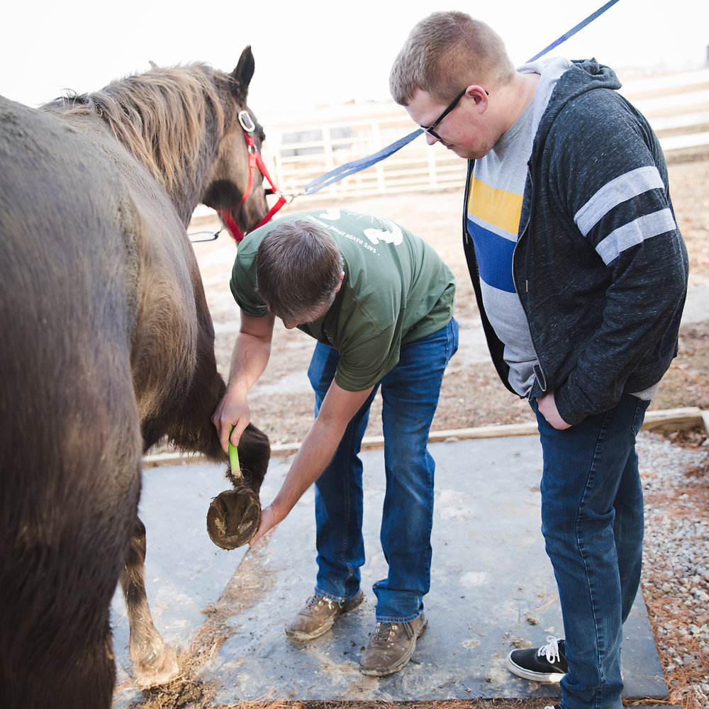 Our Mission - To provide a safe place to promote healing for youth in our community by empowering youth, through outdoor and equine assisted activities, to become leaders who inspire hope in their communities.