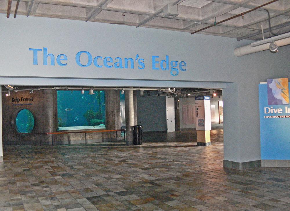 ocean's edge.JPG