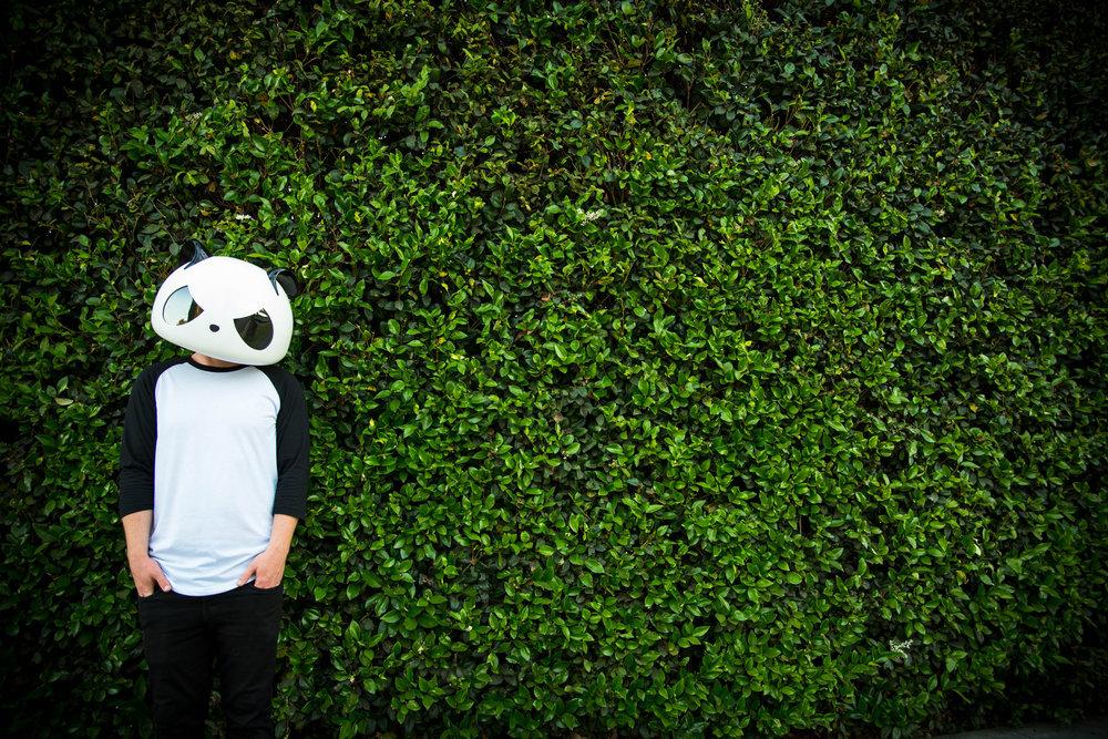 White Panda