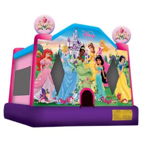 Disney-Princess.png
