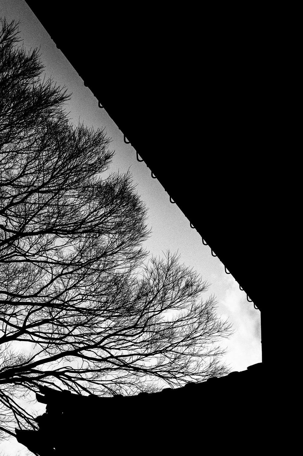04.20140314-besidesTokyo-13.jpg
