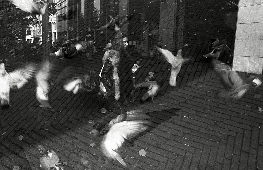 PS_UL_2 Den Haag (7).jpg