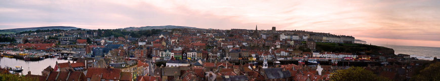 Whitby From The Abbey